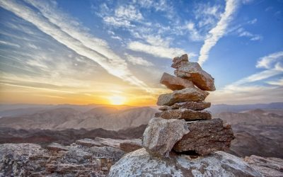 Siete capacidades básicas para vivir en equilibrio